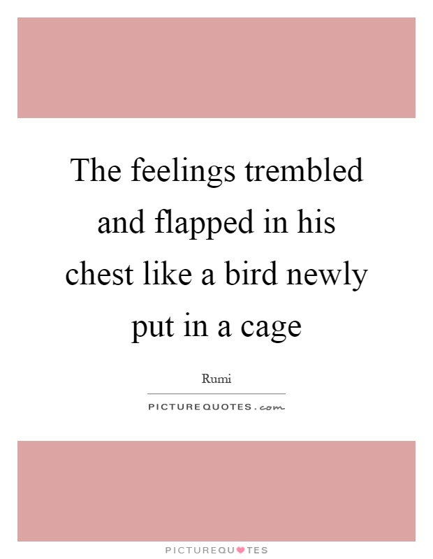 The feelings trembled and flapped in his chest like a bird newly put in a cage Picture Quote #1