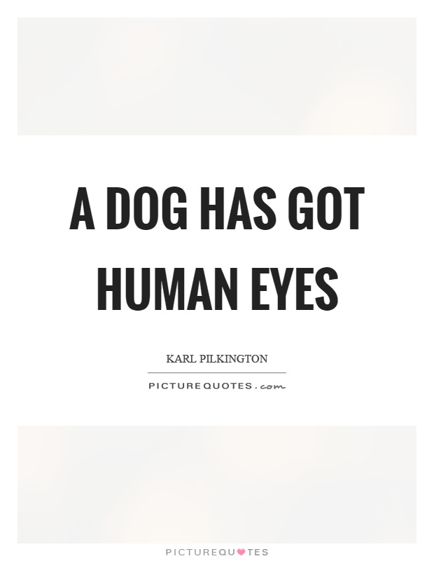 A dog has got human eyes Picture Quote #1