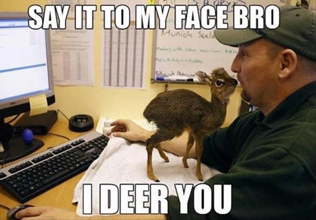 Say it to my face bro - I deer you Picture Quote #1