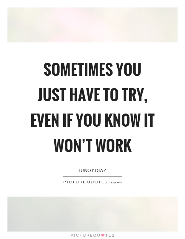 Sometimes you just have to try, even if you know it won't work Picture Quote #1