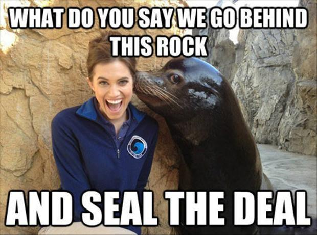 What do you say we go behind this rock and seal the deal Picture Quote #1