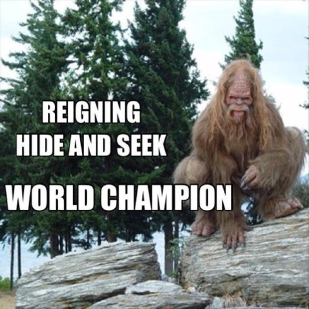 Reigning hide and seek world champion Picture Quote #1