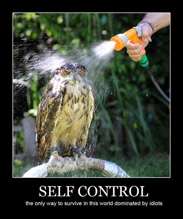 Self control. The only way to survive in this world dominated by idiots Picture Quote #1