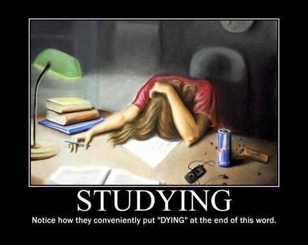 "Studying. Notice how they conveniently put ""DYING"" at the end of this word Picture Quote #1"