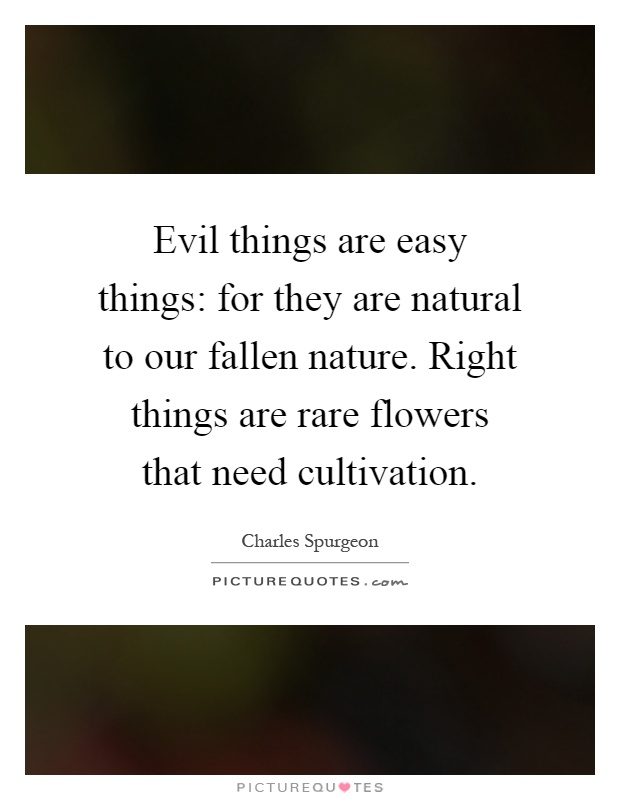 Evil things are easy things: for they are natural to our fallen nature. Right things are rare flowers that need cultivation Picture Quote #1