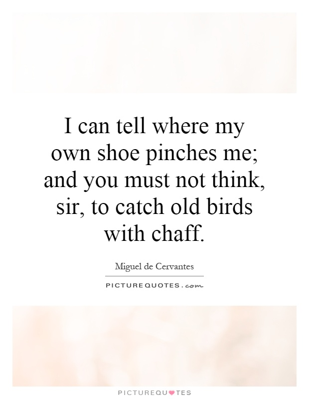 I can tell where my own shoe pinches me; and you must not think, sir, to catch old birds with chaff Picture Quote #1