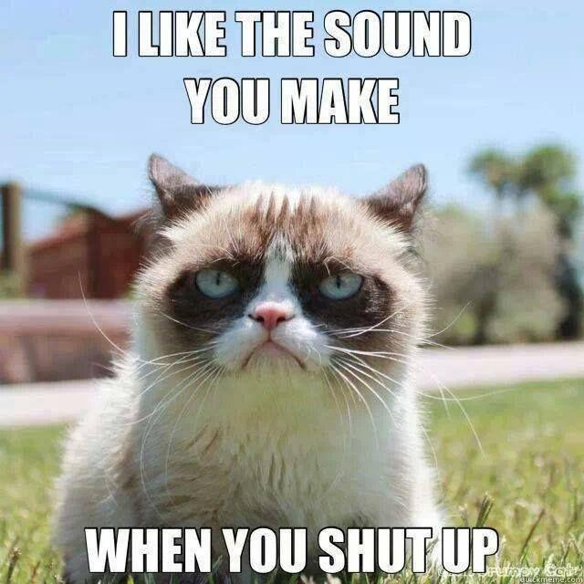 I like the sound you make when you shut up Picture Quote #1