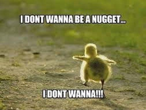 I don't wanna be a nugget... I don't wanna!!! Picture Quote #1
