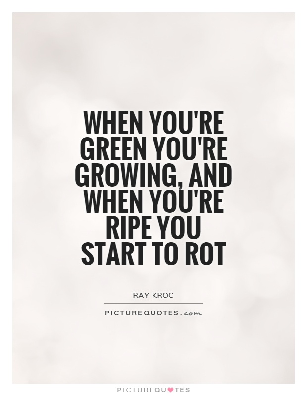When you're green you're growing, and when you're ripe you start to rot Picture Quote #1