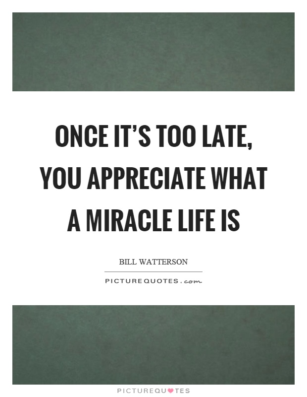 Once it's too late, you appreciate what a miracle life is Picture Quote #1