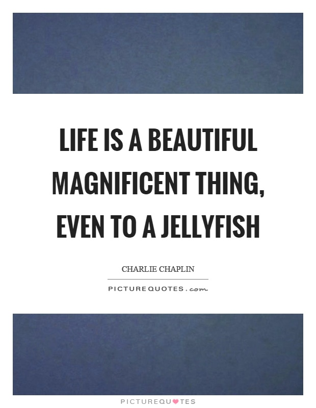Life is a beautiful magnificent thing, even to a jellyfish Picture Quote #1
