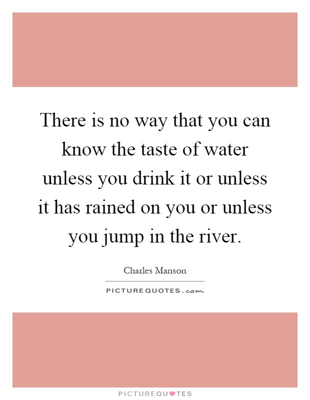 There is no way that you can know the taste of water unless you drink it or unless it has rained on you or unless you jump in the river Picture Quote #1