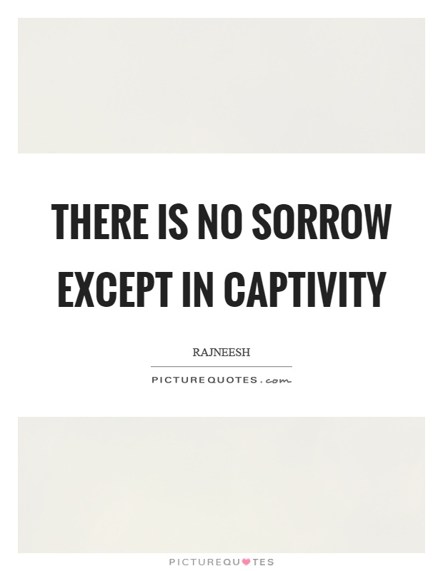 There is no sorrow except in captivity Picture Quote #1