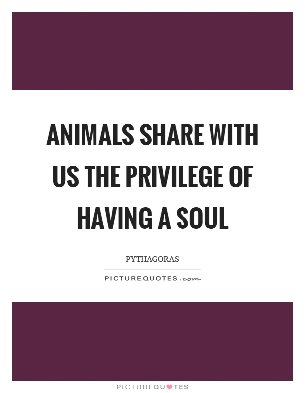 Animals share with us the privilege of having a soul Picture Quote #1