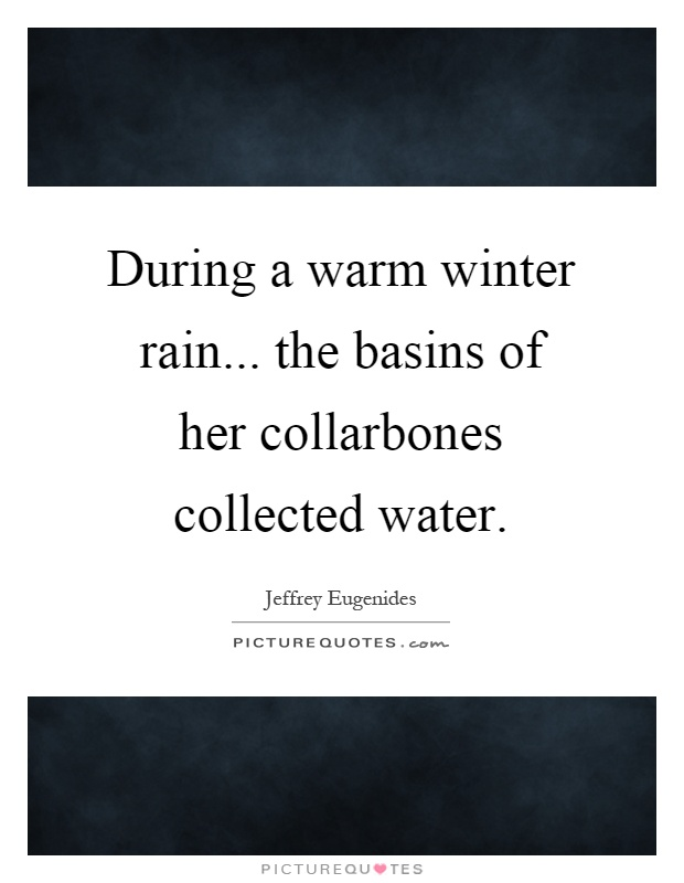 During a warm winter rain... the basins of her collarbones collected water Picture Quote #1