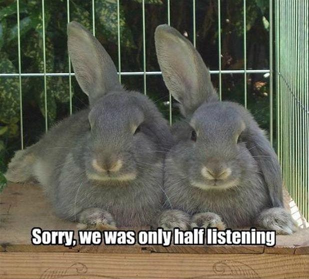 Sorry, we was only half listening Picture Quote #1