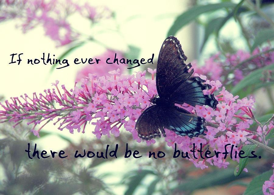If nothing ever changed there would be no butterlies Picture Quote #1