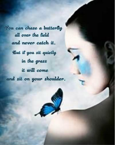You can chase a butterfly all over the field and never catch it. But if you sit quietly in the grass it will come and sit on your shoulder Picture Quote #1