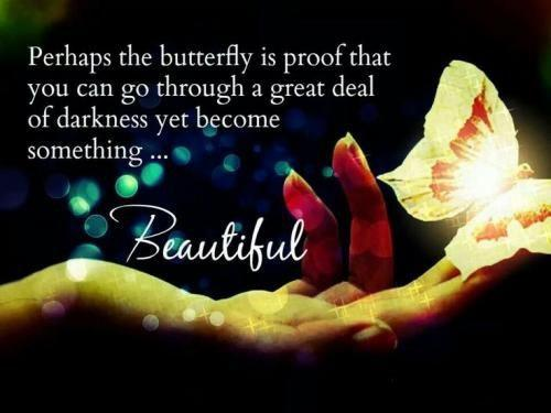 Perhaps the butterfly is proof that you can go through a great deal of darkness yet become something beautiful Picture Quote #1