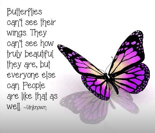 Friendship Quotes About Butterflies : Butterflies can t see their wings they