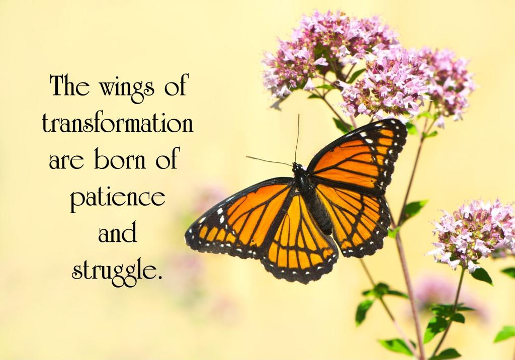 The wings of transformation are born of patience and struggle Picture Quote #1