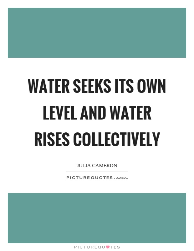 Water seeks its own level and water rises collectively Picture Quote #1