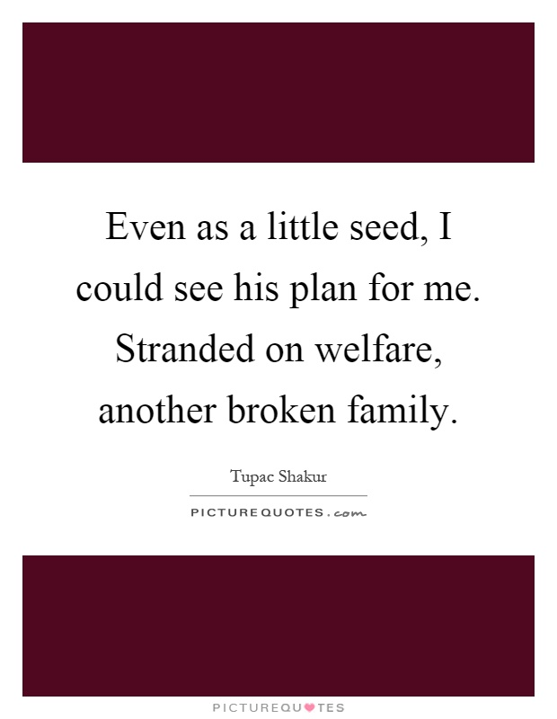 Even as a little seed, I could see his plan for me. Stranded on welfare, another broken family Picture Quote #1