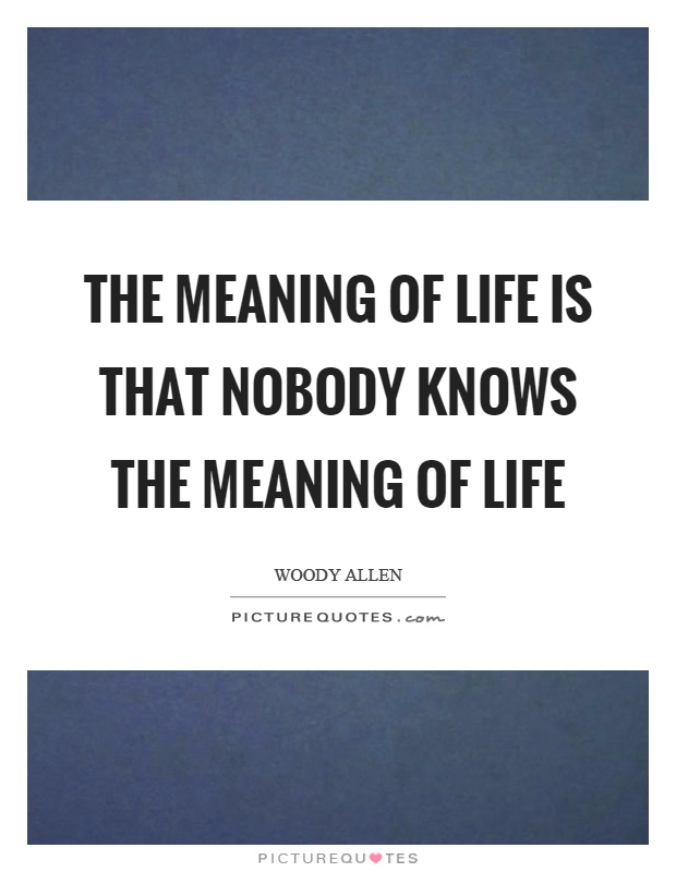 The meaning of life is that nobody knows the meaning of life Picture Quote #1