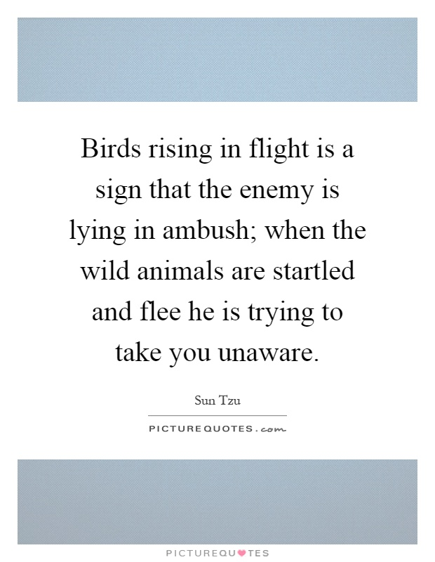 Birds rising in flight is a sign that the enemy is lying in ambush; when the wild animals are startled and flee he is trying to take you unaware Picture Quote #1