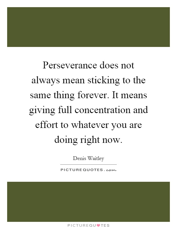 Perseverance does not always mean sticking to the same thing forever. It means giving full concentration and effort to whatever you are doing right now Picture Quote #1