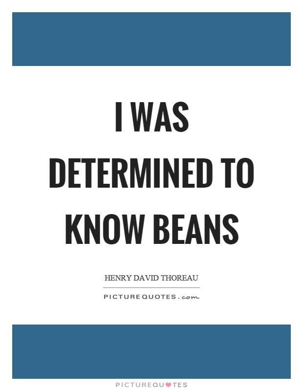 I was determined to know beans Picture Quote #1
