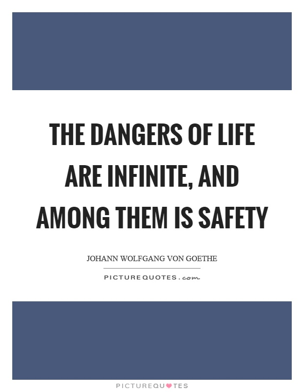 The dangers of life are infinite, and among them is safety Picture Quote #1