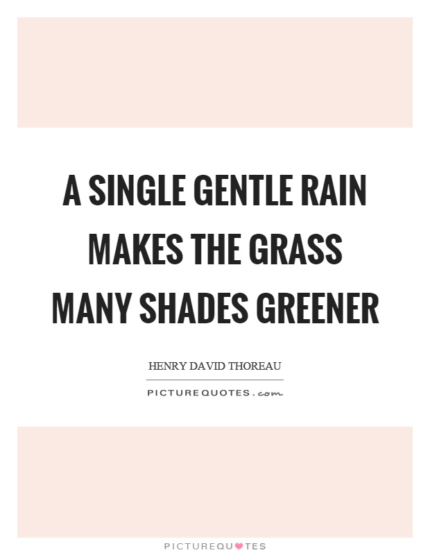 A single gentle rain makes the grass many shades greener Picture Quote #1