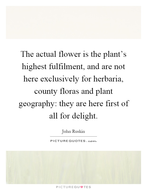 The actual flower is the plant's highest fulfilment, and are not here exclusively for herbaria, county floras and plant geography: they are here first of all for delight Picture Quote #1