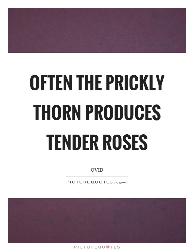 Often the prickly thorn produces tender roses Picture Quote #1
