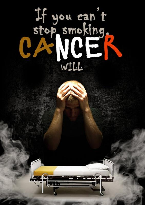 Anti Smoking Quotes Beauteous If You Can't Stop Smoking Cancer Will  Picture Quotes