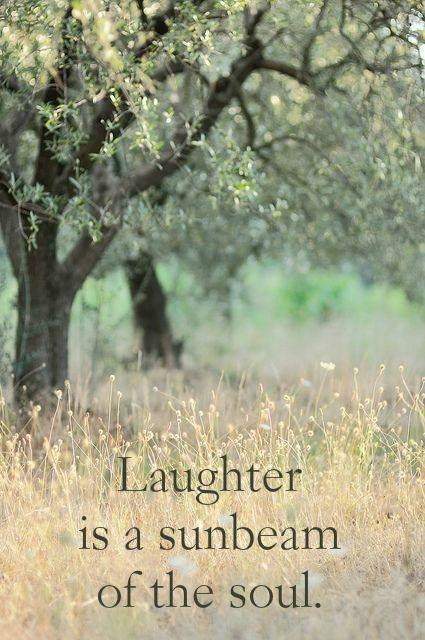 Laughter is a sunbeam of the soul Picture Quote #2