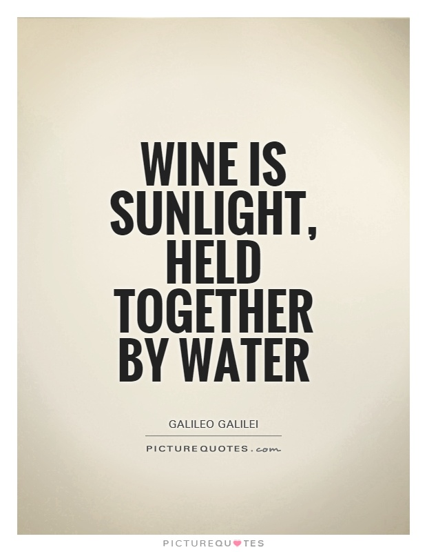 Wine is sunlight, held together by water Picture Quote #1