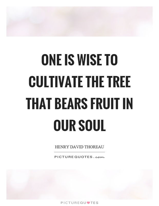One is wise to cultivate the tree that bears fruit in our soul Picture Quote #1
