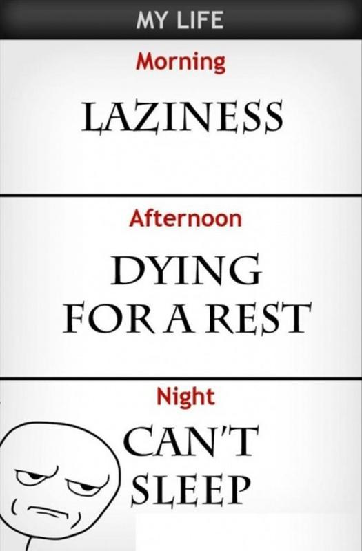 My life. Morning. Laziness. Afternoon. Dying for a rest. Night. Can't sleep Picture Quote #1