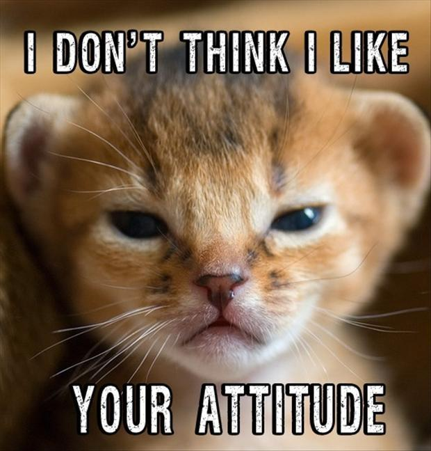 I don't think I like your attitude Picture Quote #1
