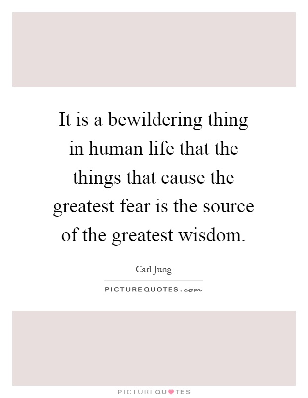 It is a bewildering thing in human life that the things that cause the greatest fear is the source of the greatest wisdom Picture Quote #1