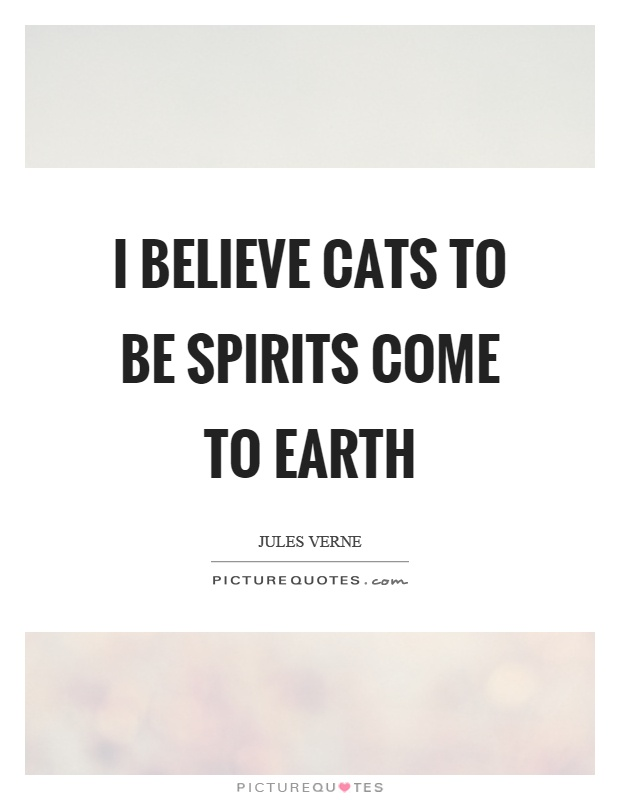 I believe cats to be spirits come to earth Picture Quote #1
