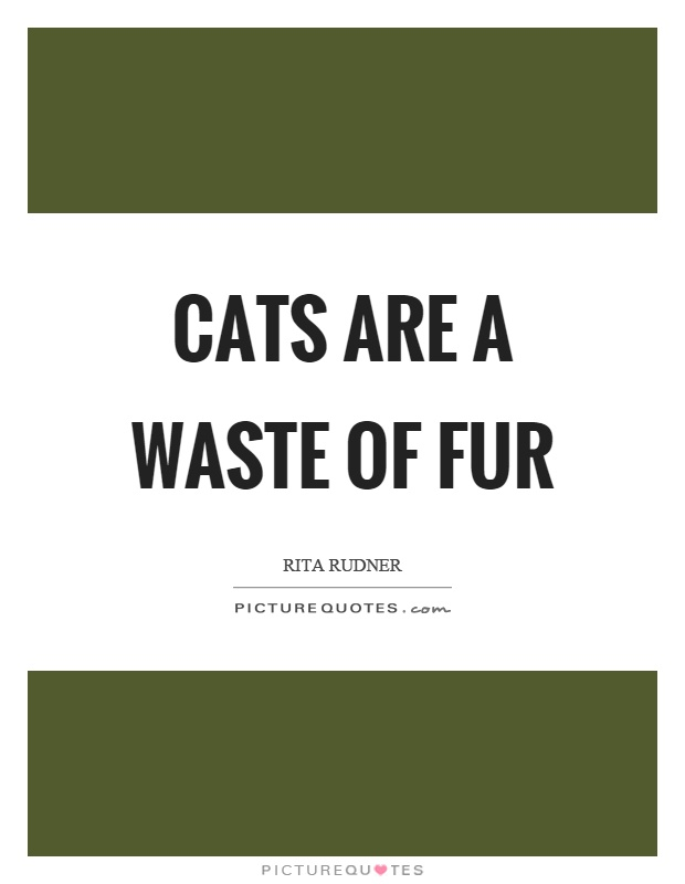 Cats are a waste of fur Picture Quote #1