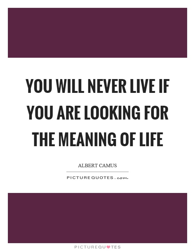 You will never live if you are looking for the meaning of life Picture Quote #1