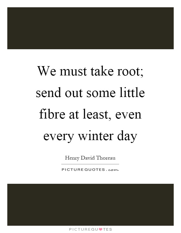 We must take root; send out some little fibre at least, even every winter day Picture Quote #1