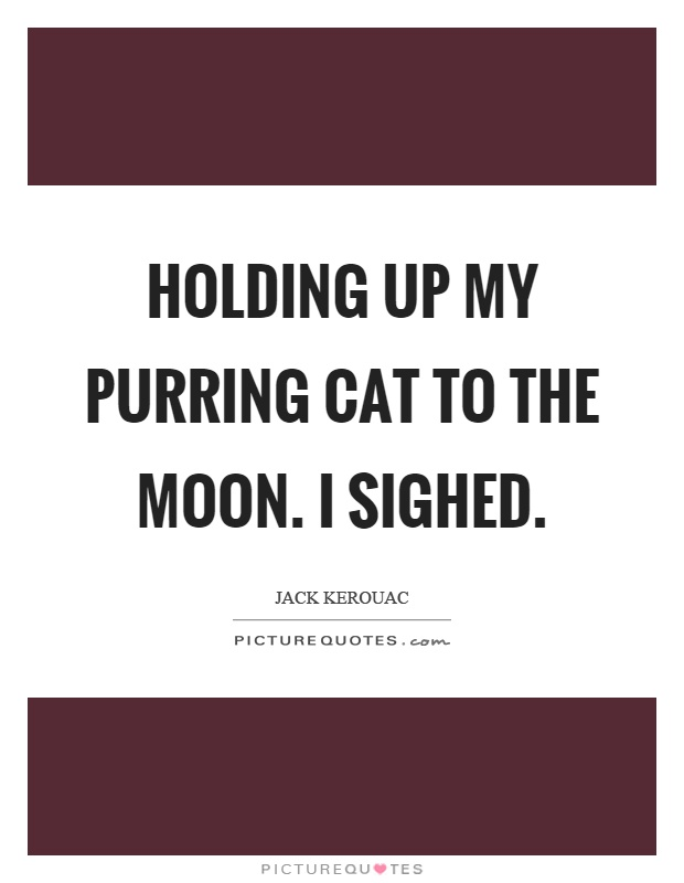 Holding up my purring cat to the moon. I sighed Picture Quote #1