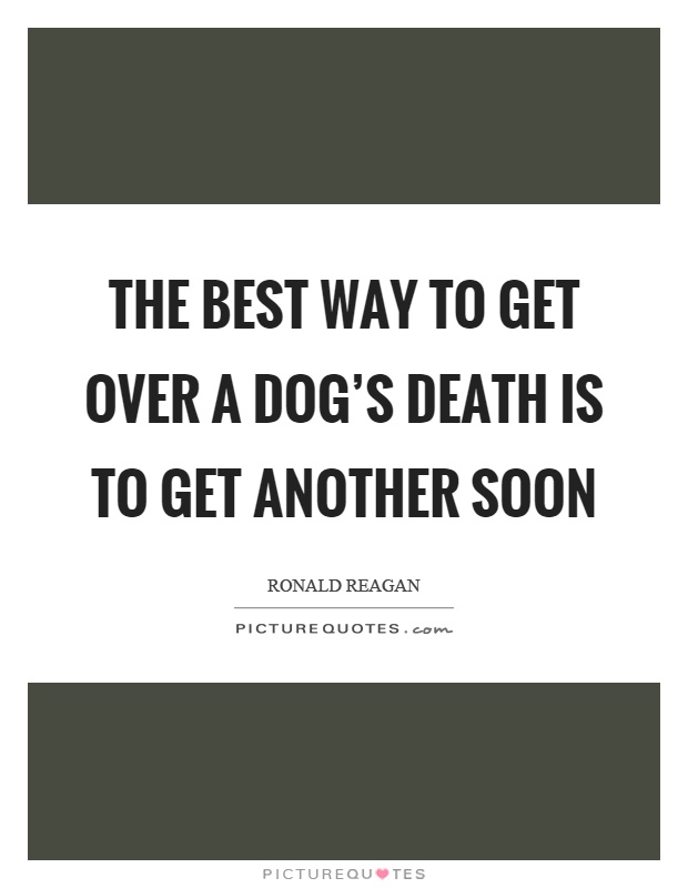 The best way to get over a dog's death is to get another soon Picture Quote #1