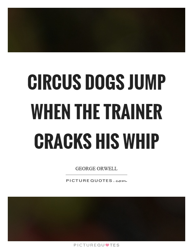 Circus dogs jump when the trainer cracks his whip Picture Quote #1