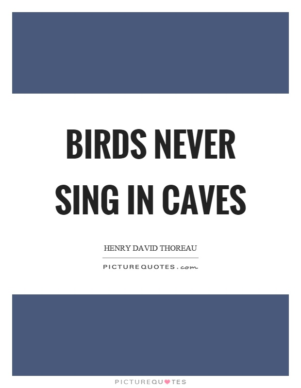 Birds never sing in caves Picture Quote #1